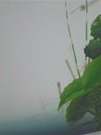 加藤千尋06.JPG