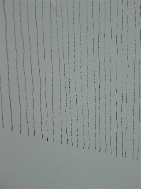 中西信洋09.JPG